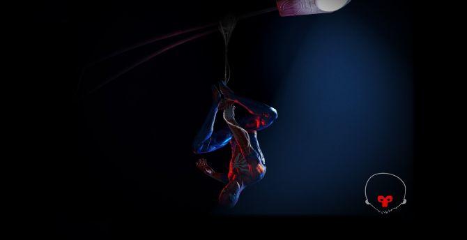 Desktop Wallpaper Hanging Spider Man Nightout Out Art Hd