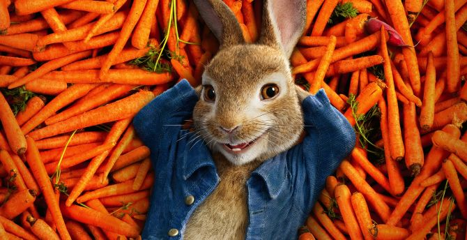 Peter rabbit, 2018, animation movie wallpaper