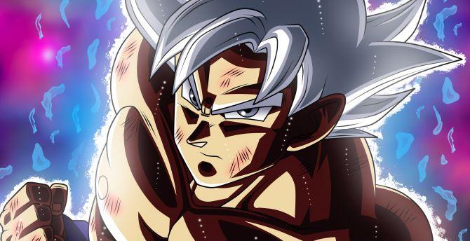 Goku Ultra Instinto Fondos De Pantalla Wallpaper: Desktop Wallpaper Anime, Goku, White Hair, Ultra Instinct
