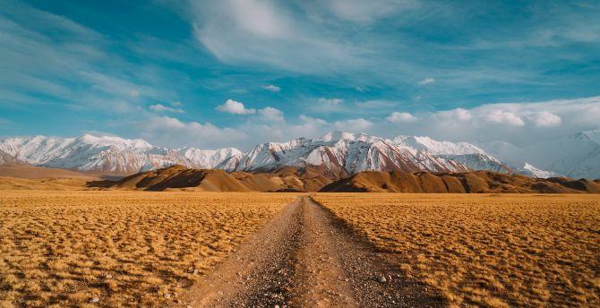Desert, landscape, blue skyline, mountains wallpaper