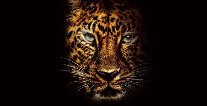 Jaguar Predator Black Animal Muzzle Art Wallpaper: Desktop Wallpaper Leopard, Predator, Jumanji: Welcome To