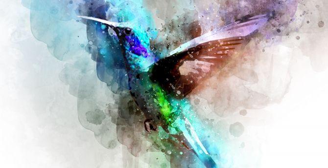 Bird Hummingbird Digital Art Wallpaper