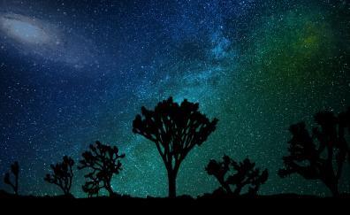 Blue green sky milky way joshua tree night