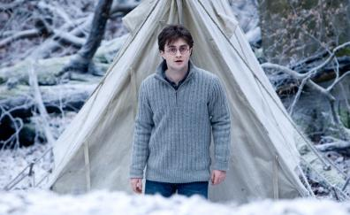 Harry potter and the deathly hallows part 1 movie denial