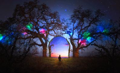 Colorful, silhouette, arch, starry sky, landscape, tree