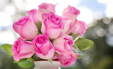 Flower vase pink roses