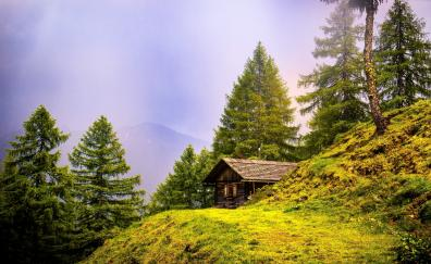 Alpine hut landscape nature