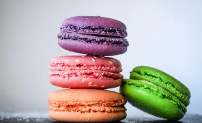 Macarons food sweets colorful