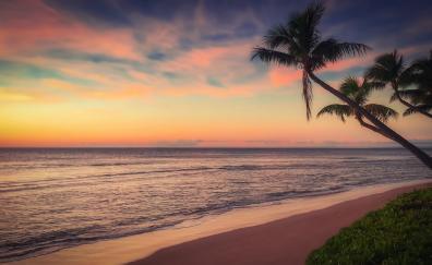 Beach, sunset, ocean, coast