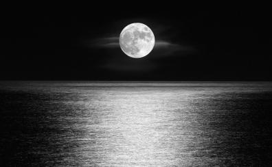 Moon, sea, sky, monochrome, night