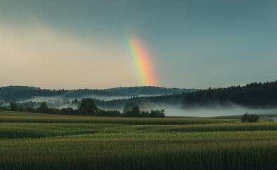 Grassland sky rainbow