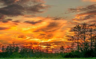 Yellow skyline sunset 4k