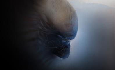 Alien muzzle 4k
