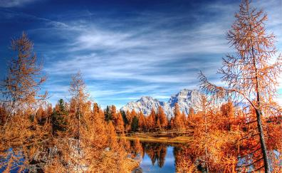 Dolomites mountains forest clean sky