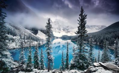 Mountains lake tree forest nature