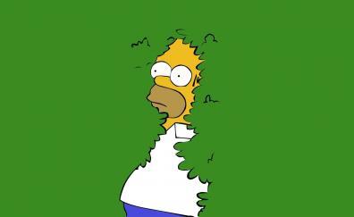 3 The Simpsons Hd Wallpapers Desktop Pc Laptop Mac