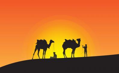 Camels sunset silhouette desert 4k