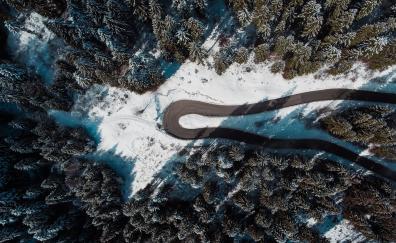 Aerial view road turn tree winter
