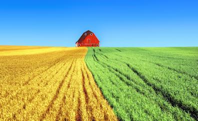Farms house landscape