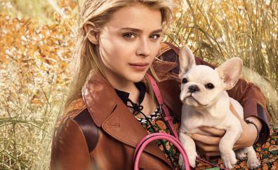 Chloë Grace Moretz, outdoor, bulldog, puppy