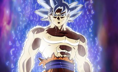 Son goku dragon ball blur super power