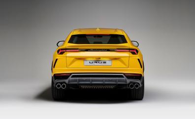 Lamborghini urus rear view