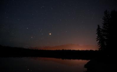 Night, reflections, lake, tree, nature