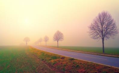 Foggy day dawn sunrise highway landscape