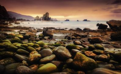 Coast, rocks, moss, sea, sunset