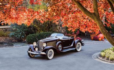 Front auburn boattail speedster 1934
