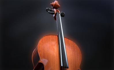 Violin, musical instrument, portrait