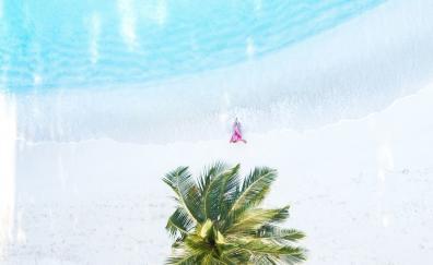 Palm tree, aerial view, beach