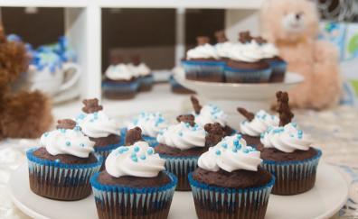 Muffin cupcake dessert