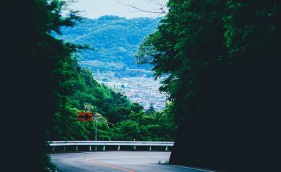 Turn, road, mountains, highway, tree