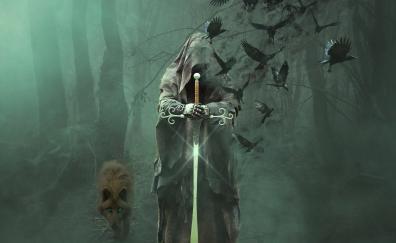 Magician warrior fantasy wolf mystical