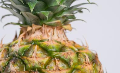 Close up texture pineapple