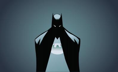 Batman minimalism illustrator 5k