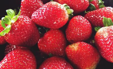 Fruits bowl strawberry fresh