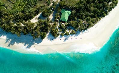 Aerial view, tropical beach, resort, green sea