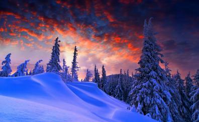 Winter evening beautiful sky