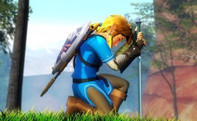 The legend of zelda game warrior