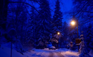 Winter night road