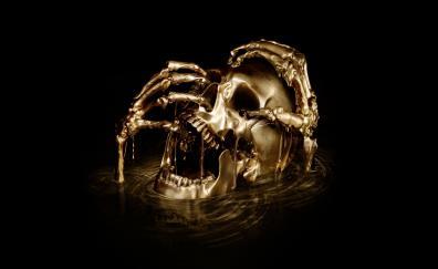 Skull, horror, black sails, digital art