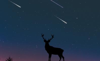 Deer moon night art