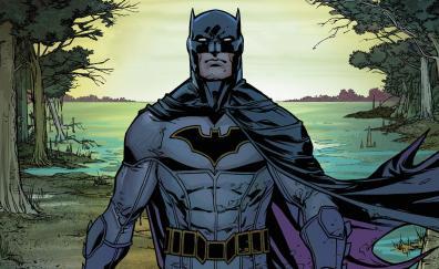 Confident batman dc comics