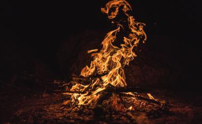 Firewood, night out, dark, fire
