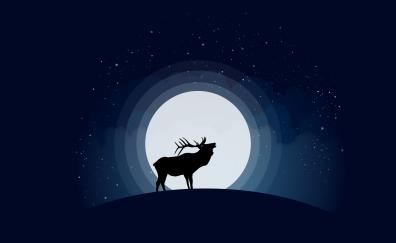 Deer moon shadow digital art