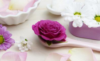 Aroma, spoon, flowers, roses