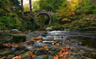 Rocks bridge river nature