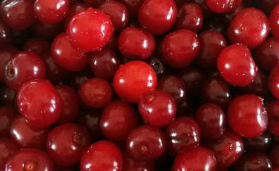 Cherry fruits red